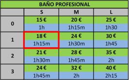 BAÑO PROFESIONAL 2017